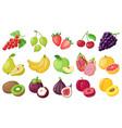 cartoon fruits tropical fruit banana fig apple vector image