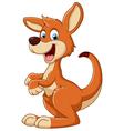 cartoon Fun kangaroo vector image vector image