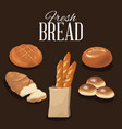 fresh bread and wheat whole cereal nutrition vector image vector image