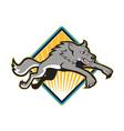 Gray Wolf Wild Dog Jumping Attacking vector image vector image
