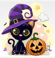 halloween of cartoon cat with pumpkin vector image vector image