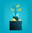 money tree grows out wallet vector image vector image