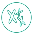 Chromosomes line icon vector image vector image