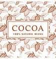 cocoa beans with leaves on white background vector image