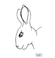 Sketch of a rabbit vector image