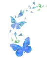 Polygon flying butterflies vector image