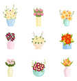 beautiful flowers in different vases set on empty vector image vector image