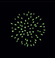 beautiful green firework bright firework isolated vector image vector image