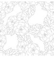begonia flower picotee outline white background vector image vector image