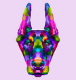 colorful doberman head vector image vector image