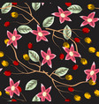 floral pattern with rose hip berries vector image vector image