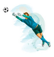 football goalkeeper jumps for ball splash of vector image