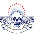 skull wings vector image