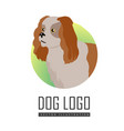 spaniel dog logo on white background vector image vector image