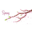 spring banner background with sacura vector image vector image