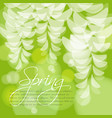 spring wedding invitation acacia flowers vector image vector image