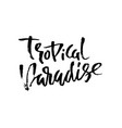 tropical paradise hand drawn lettering isolated vector image