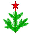 Conifer tree with star vector image