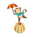cute monkey circus animal vector image vector image