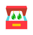 green emerald earring inbox jewelry related icon vector image vector image