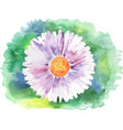 painted daisy vector image vector image