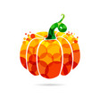 pumpkin bubble vector image vector image