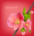 Spring greeting card with branch of Japanese vector image