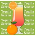 Cocktail tequila sunrise vector image vector image