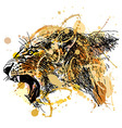 Colored hand sketch roaring lioness head vector image vector image