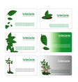 green leaves botanical business card set vector image vector image