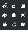 set bags icons vector image