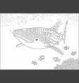 whale shark over a reef vector image vector image