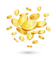 bitcoin concept vector image