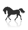 horse in flat design vector image vector image