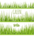 set realistic green grass lawn vector image
