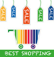 shopping cart sale vector image vector image