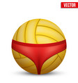 beach volleyball symbol vector image