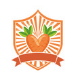 carrot fresh healthy food emblem vector image vector image