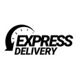 express delivery icon vector image vector image
