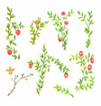 green spring branches with pink flowers isolated vector image vector image