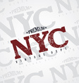 new york varsity theme vector image vector image