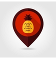 Pineapple flat mapping pin icon vector image vector image