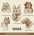 set hand drawing dogs 1 vector image