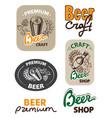 set icon beer vector image