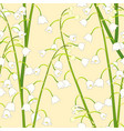 white lily of the valley on yellow background vector image vector image