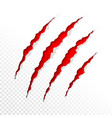 claws scratches on transparent background vector image vector image