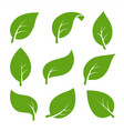 eco green color leaf logo flat icon set isolated vector image vector image