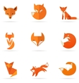 Fox icons and elements vector image vector image
