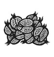 graphic stylized monochrome black pomegranate vector image vector image