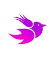 abstraction bird3 vector image vector image